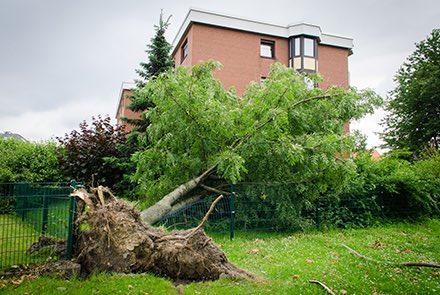 5 tips bij (storm)schade