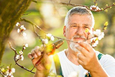 Afschaffing ouderentoeslag
